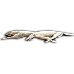 Greyhound Brooch 106.0949