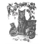 Cat With Kittens Art Print WE-PP1105